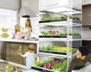 Nano Garden el concepto que te permite hacer crecer vegetales en tu cocina
